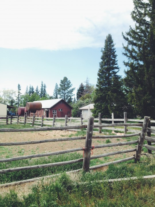 Idaho farm