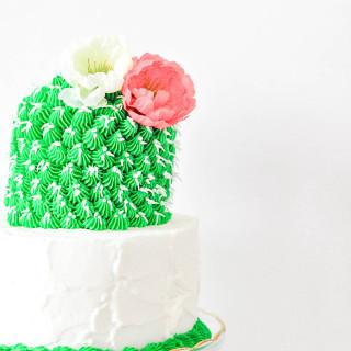 colorful cactus cake