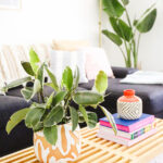 The Evolution of Our Living Room pt 2 \\ A Fresh Room Update With A Fresh Coat of Paint