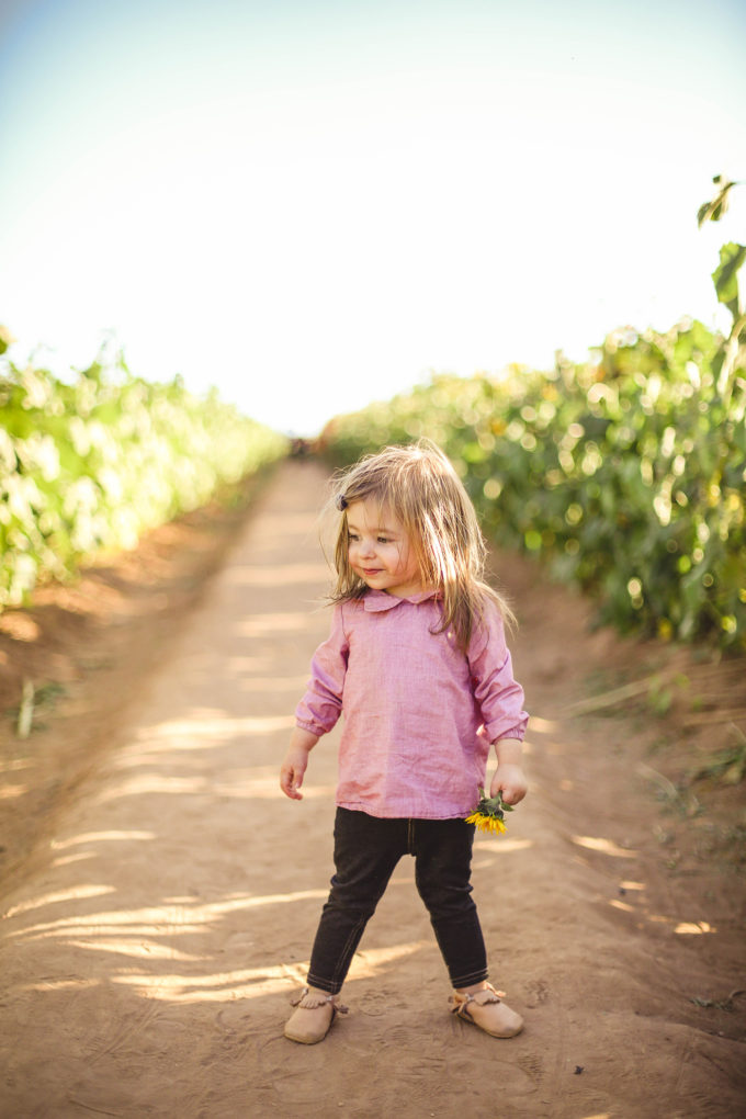 toddler girl standing in sunflower fields