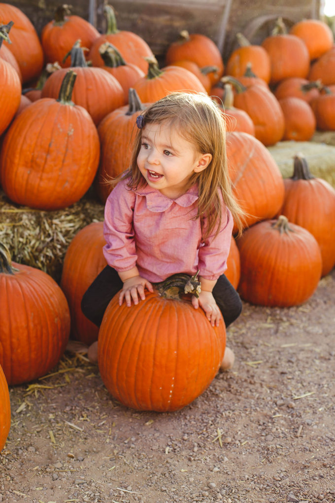 toddler girl sitting on pumpkins